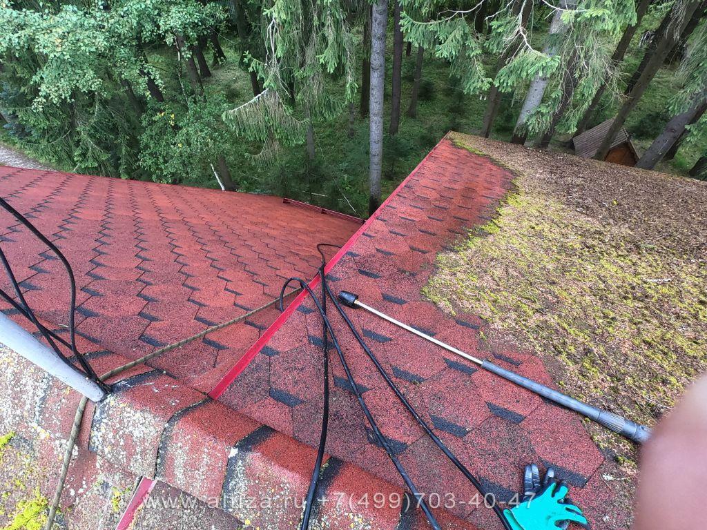 Мох на крыше