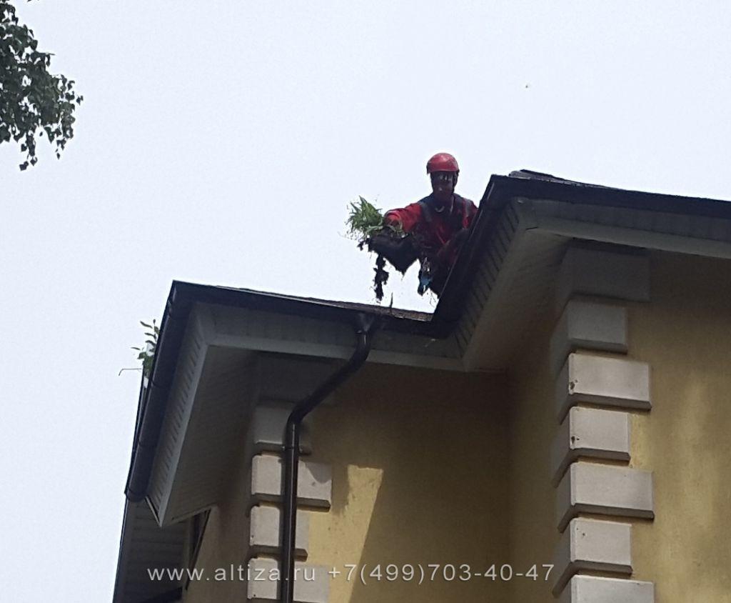 чистка крыши от мха стоимость