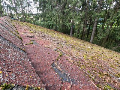 Очистка крыши от грибка