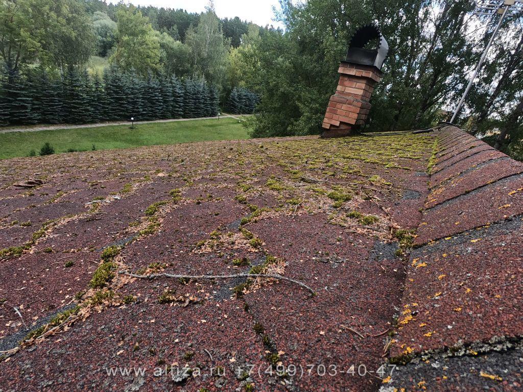 мягкая кровля мох на крыше
